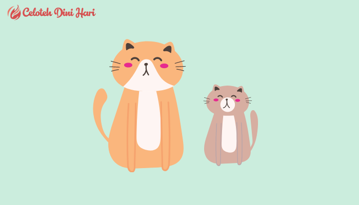 Cara Menghilangkan Jamur Pada Kucing
